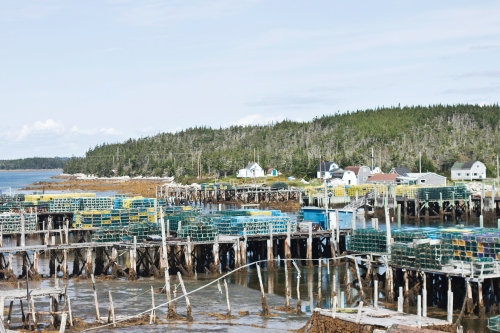 docks and lobster pots
